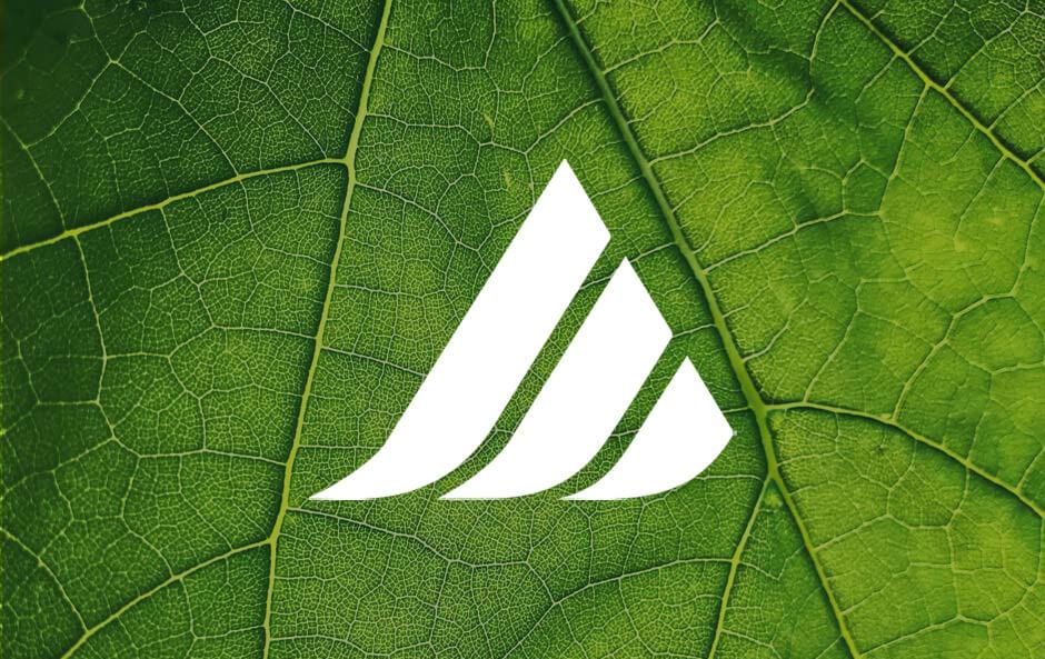 Our Guiding ESG Principles picture